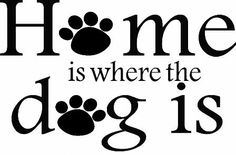 Home Is Where The Dog Is: Lacy Bella   Personalized Vinyl Lettering and Wall Decals