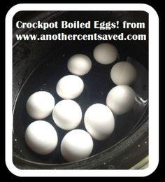 Crockpot Boiled Eggs - AnotherCentSaved.com