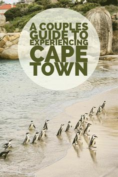 Romantic things to do with your significant other in Cape Town!