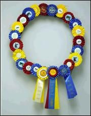 Wreath made of horse show ribbons ~ perfect idea for the ribbons my daughter has won!!