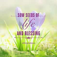 Sow seeds of Life and Blessings