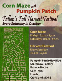 Lattin Farms Fallon, NV Go for the pumpkin patch Fallon also famous for their cantaloupes! Great Basin, Corn Maze, Event Calendar, Lake Tahoe, Hot Springs, Farms, Nevada, Things That Bounce, The Creator