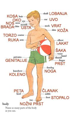 Learn the Serbian Language Online with Lidija Novakovic Lagrini. Vocabulary Worksheets, English Vocabulary, School Worksheets, Language Study, Learn A New Language, Croatian Language, Learn Finnish, Serbo Croatian, Polish Language