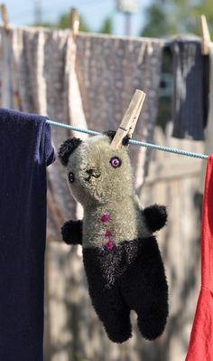 panda by Jennifer Murphy