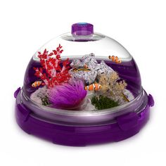 biobubble premium pet habitat! can be for fish, terrariums, turtles and small rodents!
