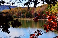 Fall Colors, Fall, Colors, Digital Download, Water, Photo, Photography, Lake, Arkansas by LittleMomentsPhotos on Etsy