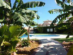 Encontramos un jardín en mal estado en cuanto a mantenimiento se refiere, rodeado por un seto de cipreses con mucha falta de podar, sin plantaciones y un césped en mal estado. Cambiemos parte del césped por césped artificial y la otra parte la mejoramos con un buen abonado y resiembra hasta recuperar su estado actual. En la entrada hemos instalado un jardín tropical con aires Caribeños. #GardenDesign, #HomeInstallations, #HomeMaintenance, #Makeovers, #Landscaping, #DiseñoDeJardines,