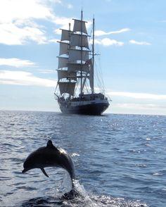 "cyj70: "" Tenacious of the Jubilee Sailing Trust "" …"