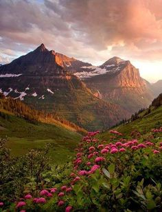 Mt. Oberlin and Bird Woman Falls, Glacier National Park @ABW