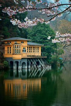 ↰✯↱lugares - Lake House, Saitama, Japan photo via graham Places Around The World, The Places Youll Go, Places To See, Around The Worlds, Photo Japon, Japan Photo, Kyoto, Beautiful World, Japan Travel