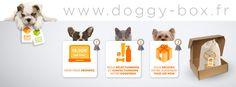 Startup : La Doggy Box, le coffret cadeau mensuel pour son chien - Animaux (6 vues)