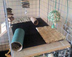 bunny or rabbit cage diy