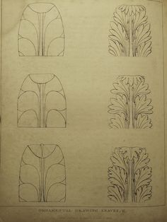 surface fragments: How to Draw the Acanthus: Drawing Shadows (Part IV)