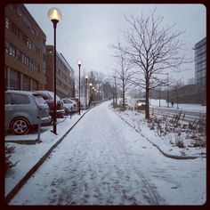 First snowfall by rogeriosnarli