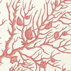 CORAL GABLES, Coral on White, T6867, Collection Texture Resource 3 from Thibaut