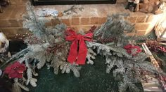 Real Christmas tree bough