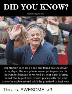 Summary The 48 Best Bill Murray Quotes Curated Quotes
