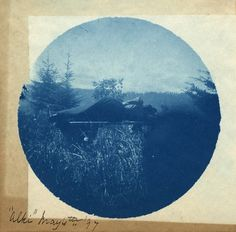 Vintage Cyanotype from 1897 • Unknown Ph