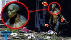 Top 8 Unbelievable Reptilians Creatures Caught On Camera & Spotted In Real Life Alien Photos, Creepy Photos, Strange Photos, Les Aliens, Aliens And Ufos, Scary Alien, Alien Art, Illuminati, Alien Sightings