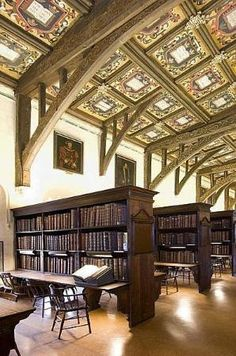 Oxford University in England in its library on campus Beautiful Library, Dream Library, Library Books, Read Books, Oxford Library, Oxford City, Oxford England, London England, A Discovery Of Witches