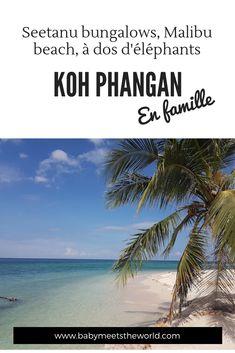 Seetanu bungalows, Malibu beach, à dos d'éléphants à Koh Phangan   Thaïlande – Babymeetstheworld - Blog maman - Blog Voyages Koh Phangan, Bangkok, Malibu Beaches, Blog Voyage, Bungalows, Water, Outdoor, Small Towns, Nice Beach