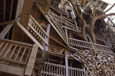 worlds largest tree house