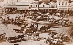 "Fort Worth became known for the cattle driving and ranching industry (hence the name ""Cowtown"")."