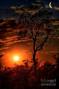 ✯ Manzanita Sunset / Moon Rise