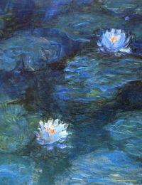 Schilderij Monet