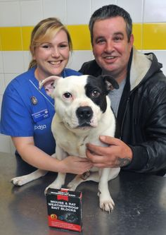Loveable Staffordshire Bull Terrier Sam owes his life to an injured paw which alerted vets to a much deadlier problem that could have proven...