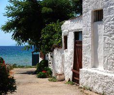 Σκάλα Καλλιράχης | Πόλεις & Χωριά | Για την περιοχή | Θάσος | Περιοχές | WonderGreece.gr