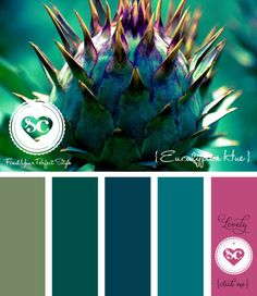 083 Eucalyptus Hue by Asmalina © 2012 Sorbetcolour ™ Paint Color Palettes, Colour Pallette, Color Palate, Colour Schemes, Color Combinations, World Of Color, Color Of Life, Colours That Go Together, Design Palette