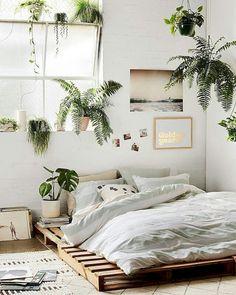 plants. everywhere.