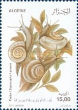 Theba pisana,  The white garden snail,Fauna - Snails. Algerian stamp, circa 2012