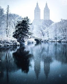 New York Drawing, Central Park Nyc, New York Winter, Park In New York, New York Christmas, New York City Travel, Winter Photos, Dream City, Winter Scenes