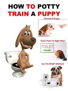 Puppy potty training can be a difficult and frustrating experience. The process will require patience and consistent discipline to properly train your puppy. Puppies should begin potty training as soon as they are brought home. Puppy Potty Training Tips, Dog Training Methods, Dog Training Techniques, Training Your Dog, Dog Minding, Toilet Training, Dog Barking, New Puppy, Doge