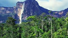 Angel Falls, also known as Salto Angel surrounded by unique place provides you the chance to connect with nature in a straight and actual way. The waterfall is situated in South America in the Cana...