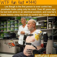 wtf fun facts: