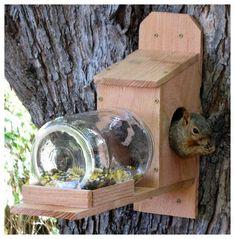 Squirrel Jar Feeder & Looks like it& build from a cedar fence picket. Squirrel Jar Feeder & Looks like it& build from a cedar fence picket. The post Squirrel Jar Feeder & Looks like it& build from a cedar fence picket. Bird House Feeder, Diy Bird Feeder, Squirrel Feeder Diy, Bird Feeder Plans, Bird House Plans, Bird House Kits, Garden Crafts, Garden Projects, Garden Ideas