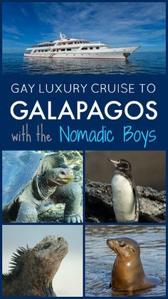 Join the Nomadic Boys for a gay cruise to the Galapagos islands in Ecuador this October!
