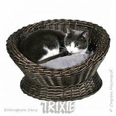 Поделка изделие Плетение Трон для кота Трубочки бумажные фото 9