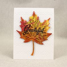 Grateful For You Card by Lizzie Jones for Papertrey Ink (August 2015)
