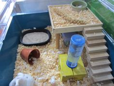 Using glued together Jenga blocks to make a staircase for your hamster