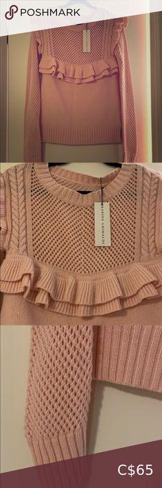 Acrylic Blend Pink Sweater Karina Grimaldi Pink Sweater soft luxurious feel / Made in USA Karina Grimaldi Sweaters Crew & Scoop Necks Nude Pumps, Columbia Sportswear, Plus Fashion, Fashion Tips, Fashion Trends, Lord & Taylor, Pink Sweater, Black Suede