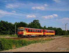 Net Photo: 231 Hungarian State Railways (MÁV) Bzmot / 117 at Békéscsaba, Hungary by Hungary, Vehicles, Car, Vehicle, Tools