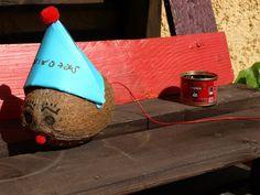 καρυδότσουφλο : Μια καρύδα που έγινε ποντικός!