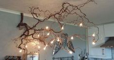 New Tree Branch Light Fixture Rustic Chandelier Ideas, Decoration Branches, Tree Branch Decor, Branch Chandelier, Lighted Branches, Rustic Chandelier, Tree Branches, Chandelier Ideas, Trees, Twig Lights