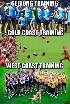 Omg I love Geelong ! Football Memes, Sports Memes, Richmond Afl, Eagles Memes, Meanwhile In Australia, Aussie Memes, Australian Football League, West Coast Eagles, Basketball Motivation