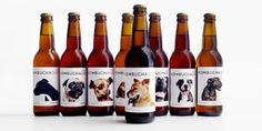Kombucha Dog - The Dieline  how much is that doggie in the window : ) PD