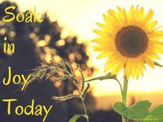 Encouragement to soak in joy today